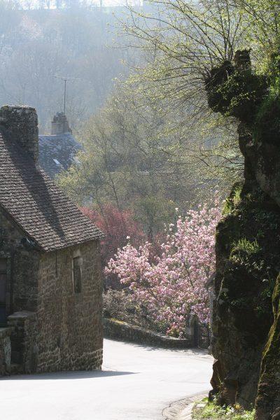 Saint-Céneri vu par Fred