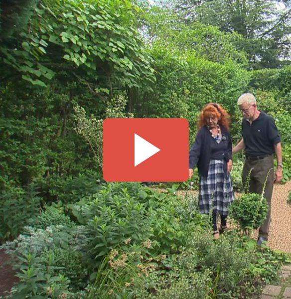 Jardin de Normandie : Jardins de la Mansonière